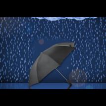 Mini esernyő 53 cm (Fekete)