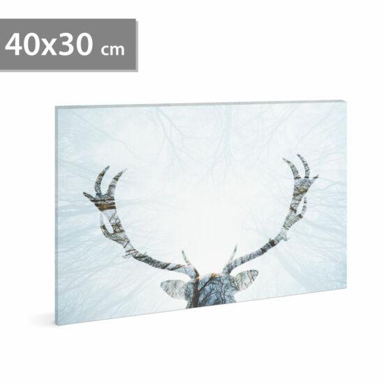 LED-es fali hangulatkép - rénszarvas (2 x AA, 40 x 30 cm)