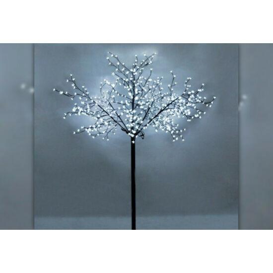 Sakura fa (Hideg fehér)